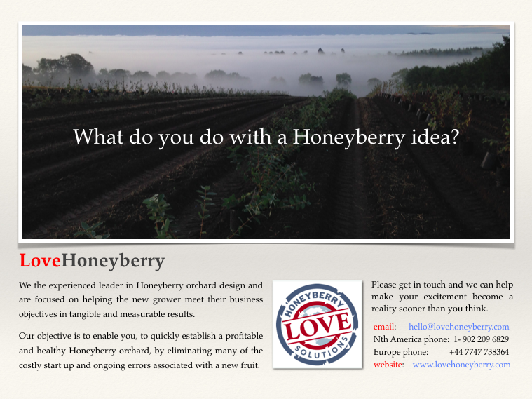 Haskap Idea Honeyberry's origins