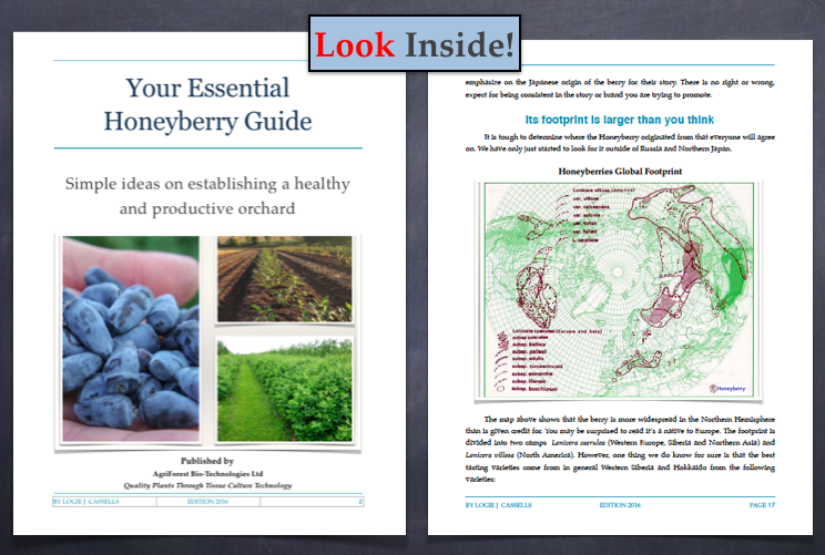 Honeyberry and Haskap book