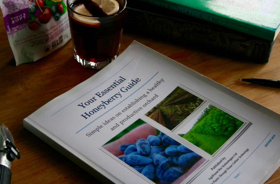 The Essential Honeyberry Guide?
